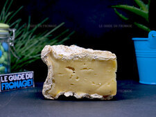 Photo du fromage Tomme de Saint Ours
