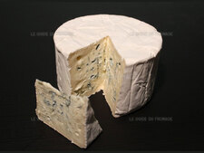Photo du fromage Bleu de Bresse