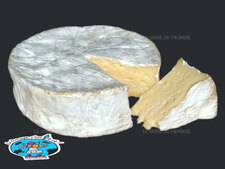 Photo du fromage Coulommiers