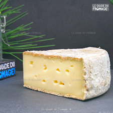 Photo du fromage Tome des Bauges