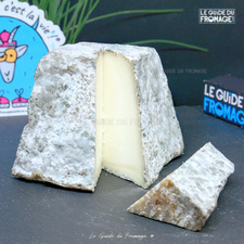 Photo du fromage Pyramide du Viornay