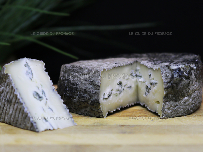 Photo du fromage Bleu Cendré