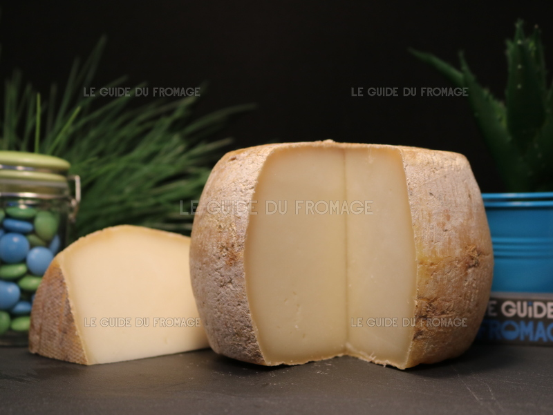 Photo du fromage Tomme de Brebis Corse