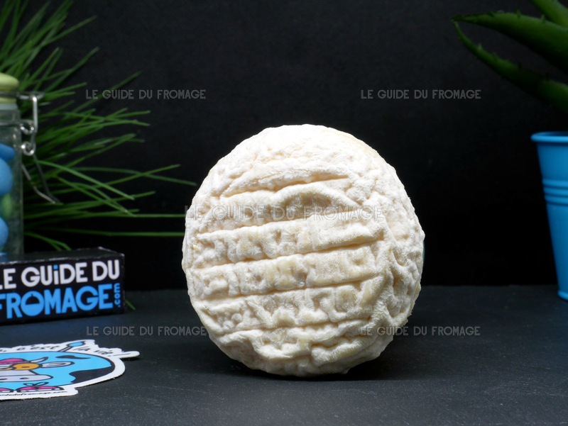 Photo du fromage Picodon