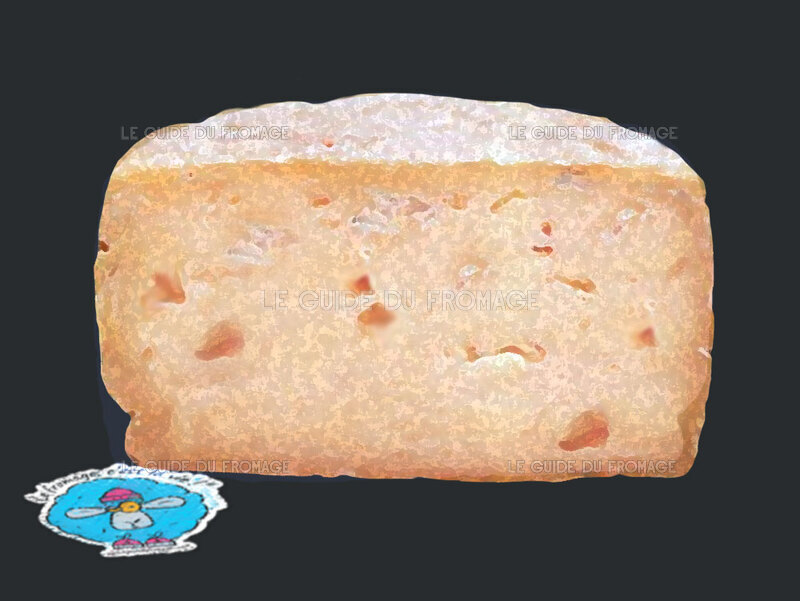 Photo du fromage Bleu de Loudes