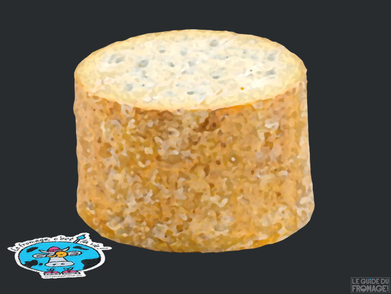 Photo du fromage Fourme de Montbrison