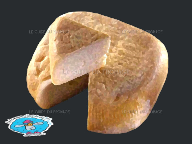 Photo du fromage Niolo