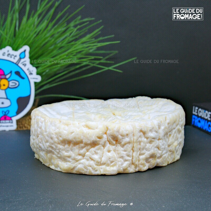 Photo du fromage Camembert Le Saint-Omer